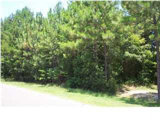23  Deer Run Road Summerville, SC 29483