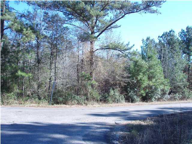 Cheyenne Road Summerville, SC 29483