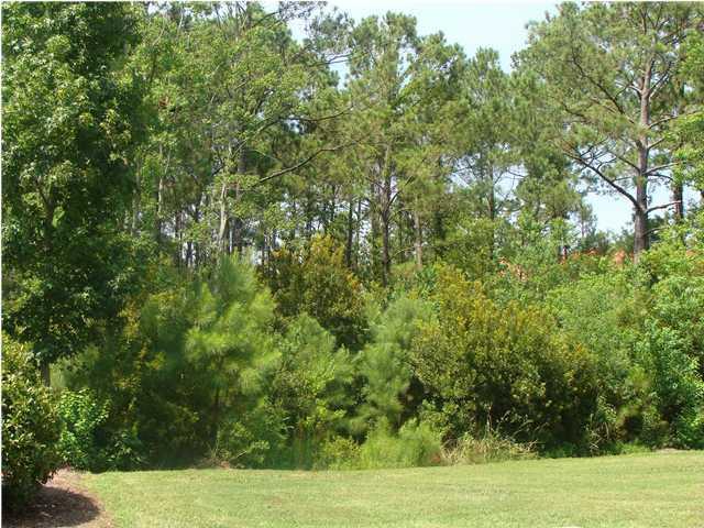 265  River Oak Drive Mount Pleasant, SC 29464