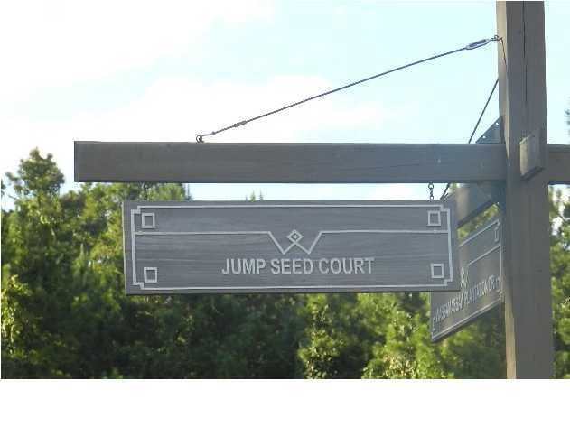 1203  Jump Seed Court Moncks Corner, SC 29461