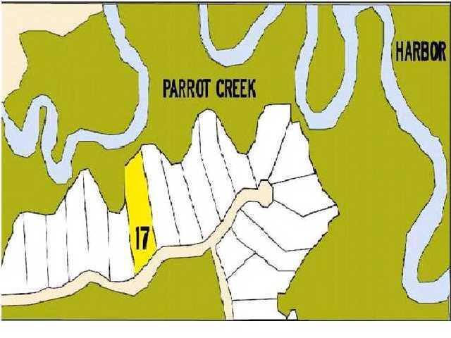 584 Parrot Point Drive Charleston, SC 29412