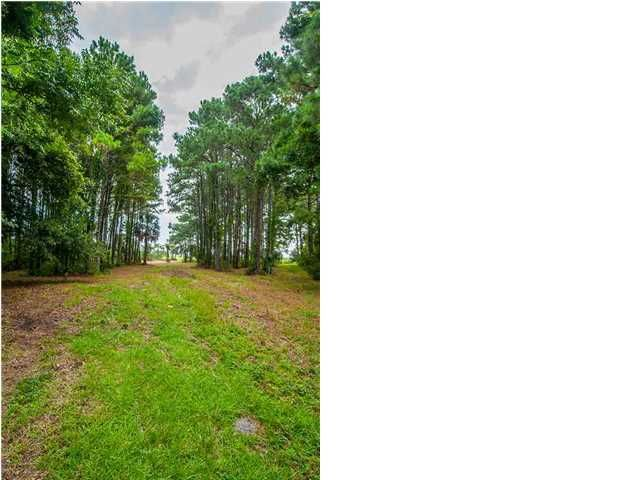 4875  Sound View Drive Mount Pleasant, SC 29466