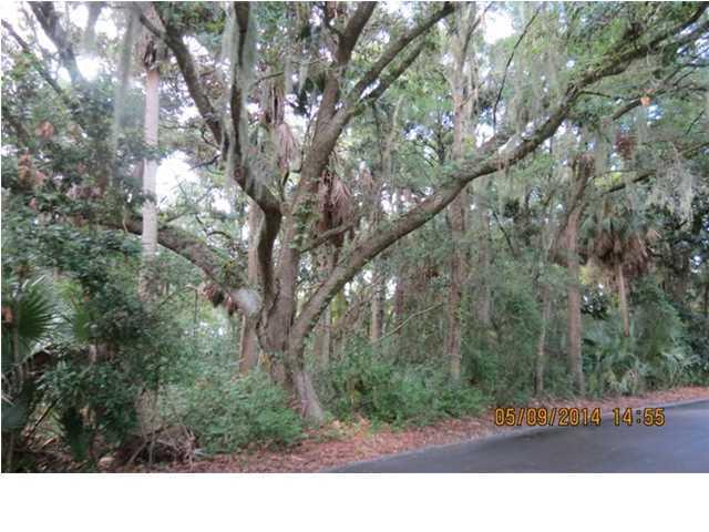 3125  Privateer Creek Road Seabrook Island, SC 29455