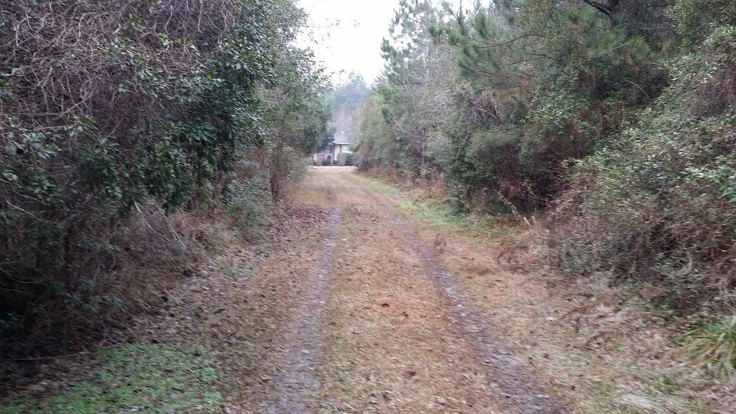 310  Bubba Lane Cross, SC 29436