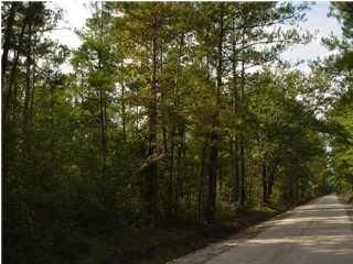 Three Mile Road Walterboro, SC 29488