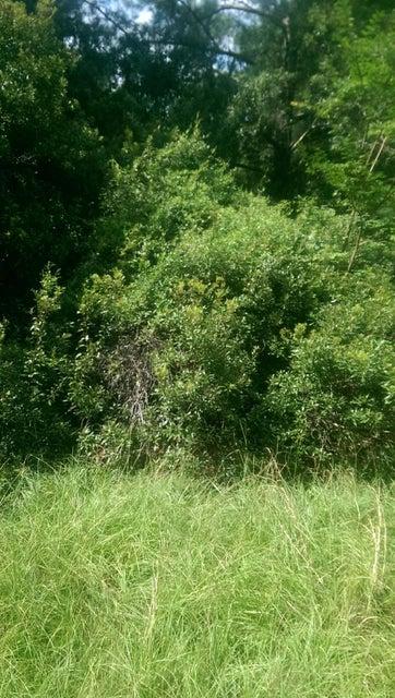 1420 Ravens Bluff Road Johns Island, SC 29455