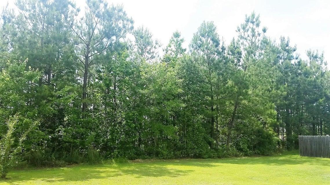 1215  Wild Goose Trail Summerville, SC 29483
