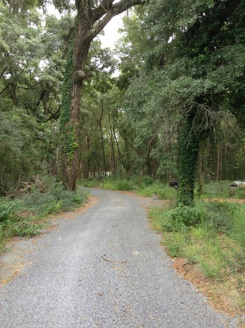 Lot 2  Percial Ross Lane Wadmalaw Island, SC 29487