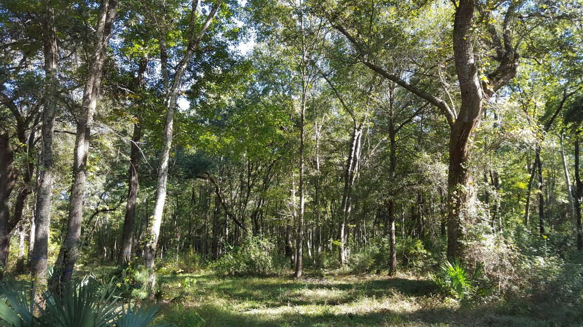 Old Rosebud Trail Awendaw, SC 29429