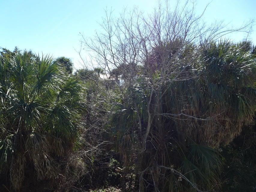 126 Jungle Road Edisto Beach, SC 29438
