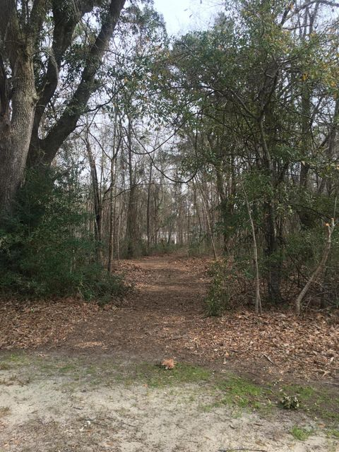 3599 Thunder Gulch Trail Mount Pleasant, SC 29466