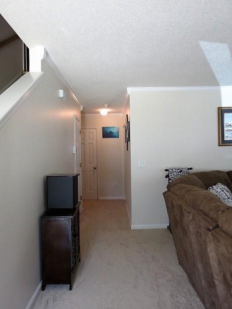 208  Bainsbury Lane Summerville, SC 29483