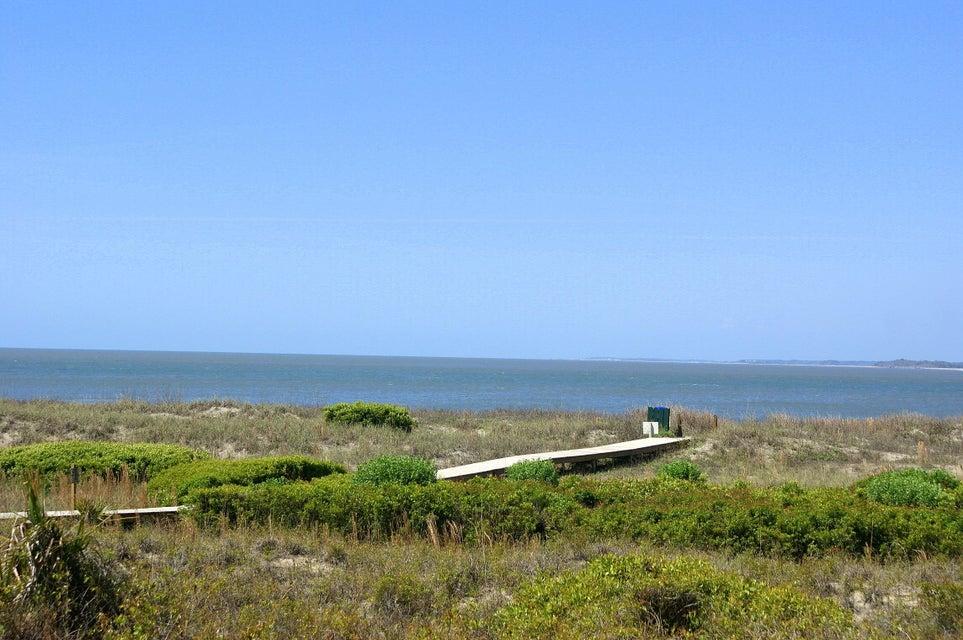 Pelican Watch Seabrook Island Sc