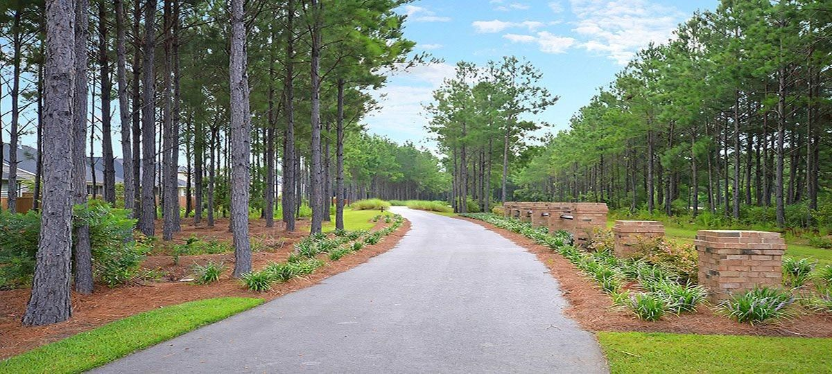 Cane Bay Plantation Homes For Sale - 625 Redbud, Summerville, SC - 5