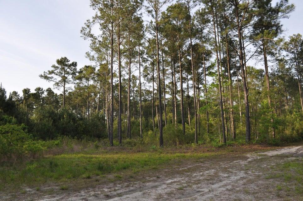 Bears Bluff Road Wadmalaw Island, SC 29487