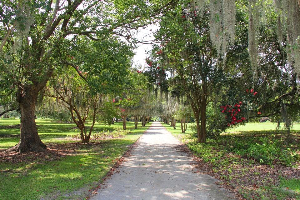 24  Parkwood Avenue Charleston, SC 29403