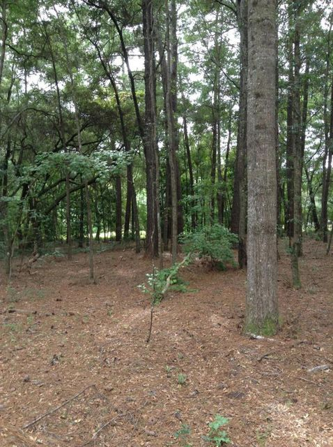 Lot 4  Percial Ross Wadmalaw Island, SC 29487