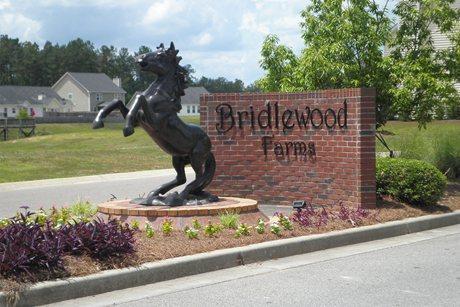 2014  Bridlewood Farms Parkway Ridgeville, SC 29472
