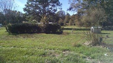 97  Perineau Court Walterboro, SC 29488
