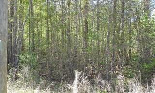 Lot E Southsong Lane Goose Creek, SC 29445