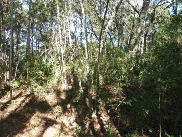 137  Conifer Lane Kiawah Island, SC 29455