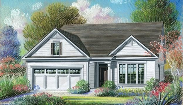 4012  Wood Violet Ln Lane Summerville, SC 29483