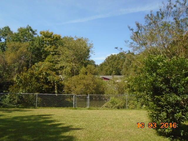 1659  Lauda Drive Mount Pleasant, SC 29464