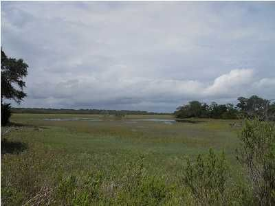 206 Jungle Shores Drive Edisto Beach, SC 29438