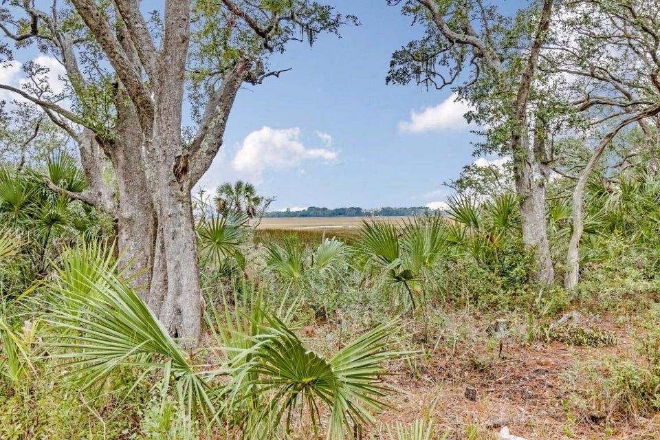40 Salty Tide Cove Mount Pleasant, SC 29464