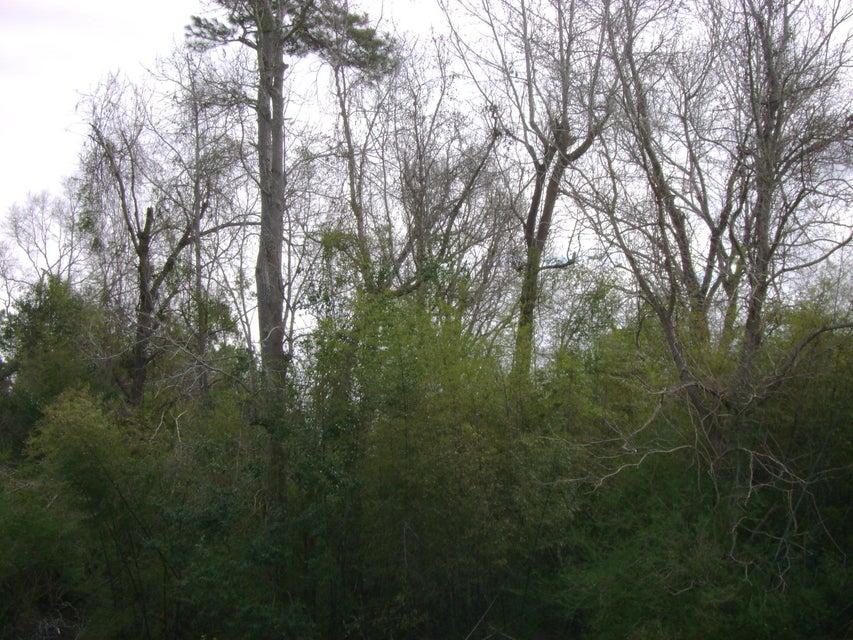 Alligator Road Cordesville, SC 29434