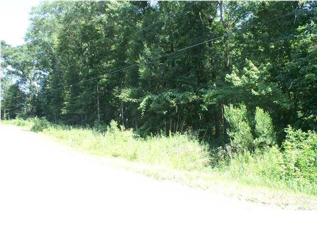 Henderson Drive Goose Creek, SC 29445