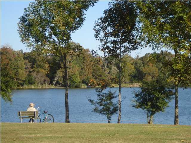 100 Danae Court Goose Creek, SC 29445