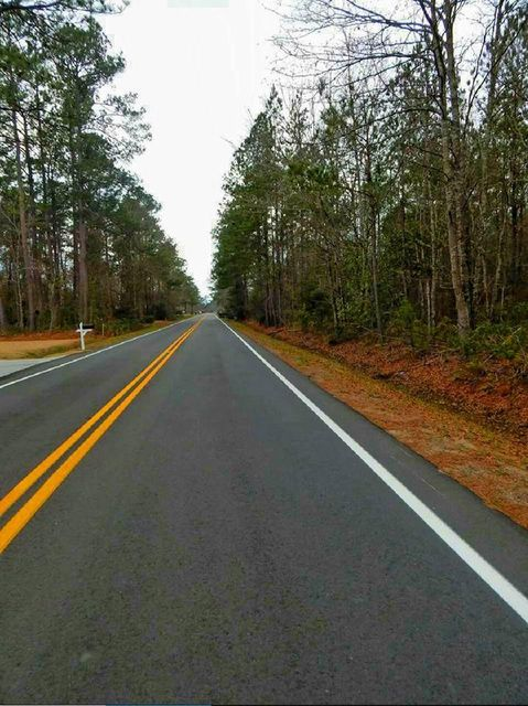 335  Estates Drive Walterboro, SC 29488