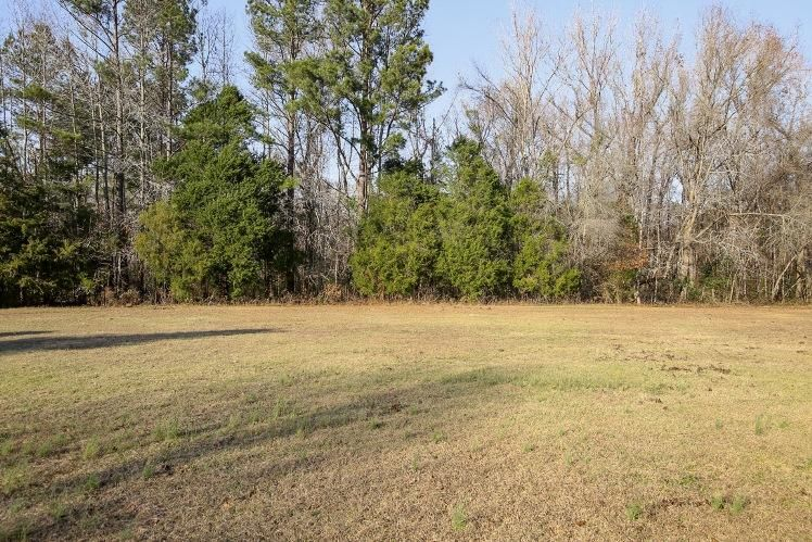 68  Elsie Court Cottageville, SC 29435