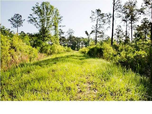 Maple Ridge Road Walterboro, SC 29488