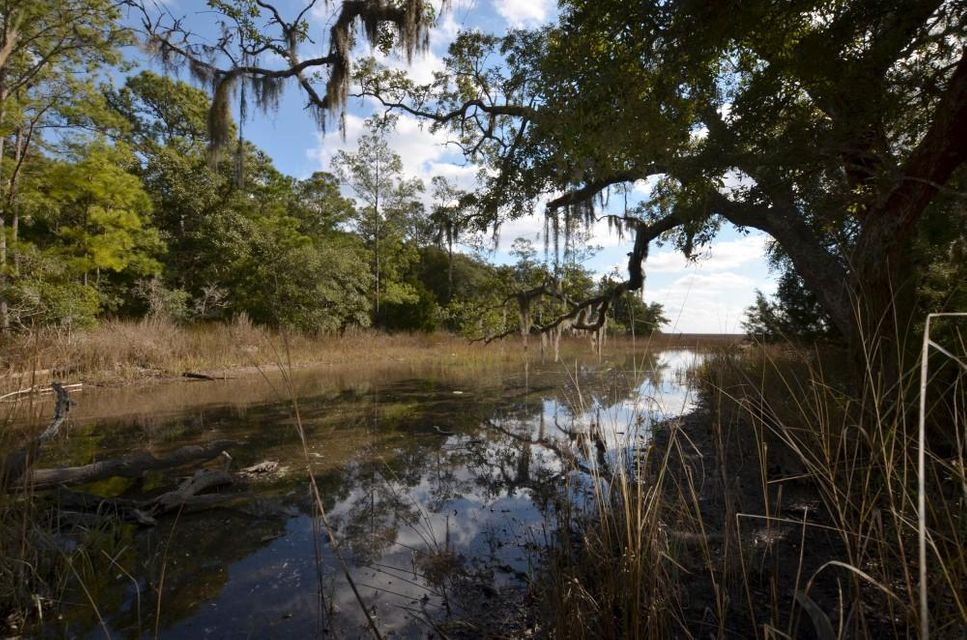 PRICELESS VIEW FOR A LOW LOW PRICE! Enjoy a panoramic view of the ICW and Cape Romain Wildlife Refuge from this marshfront lot.  This 3 acre tract is covered in native live oaks and palmettos and has a beautiful marshy inlet that wraps around it forming a peninsula. Lot also extends on the other side of Two Pines road allowing for a second home or guest cottage to be built there as well. Lot may be purchased in combination with the adjacent property for sale for a total of 5.9 acres of country bliss.