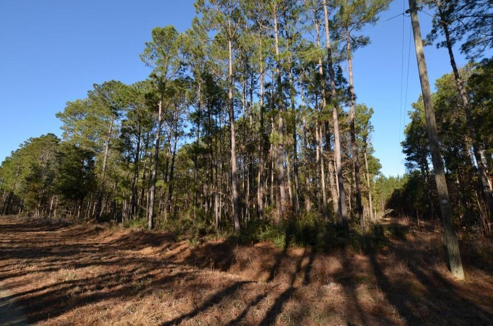 9805  Two Pines Road Mcclellanville, SC 29458