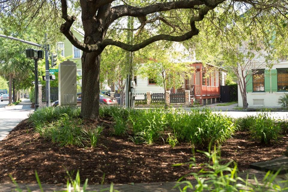 266  Ashley Avenue Charleston, SC 29403