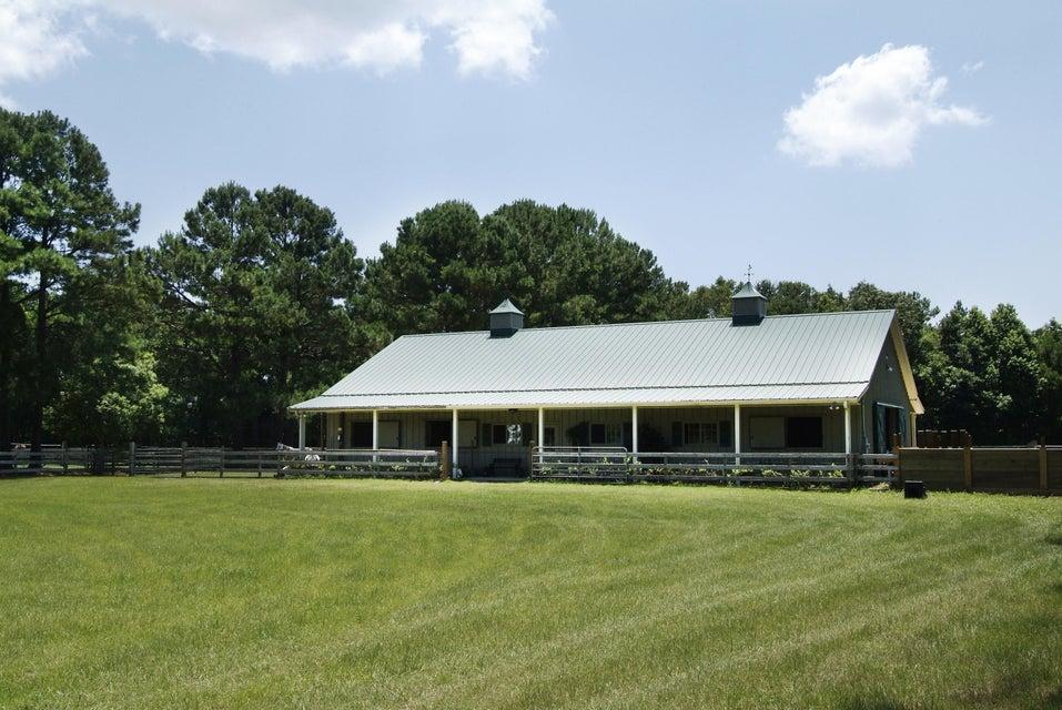4436  Wando Farms Road Mount Pleasant, SC 29429