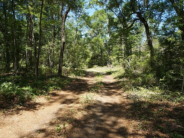 None Lots For Sale - 2952 Bohicket, Johns Island, SC - 0