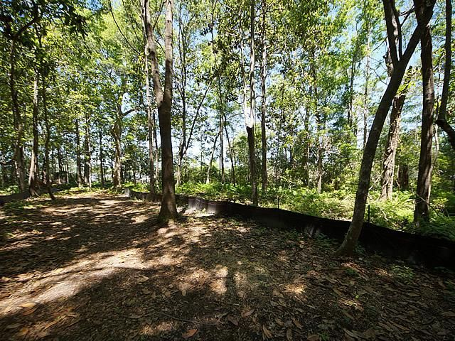 None Lots For Sale - 2952 Bohicket, Johns Island, SC - 22
