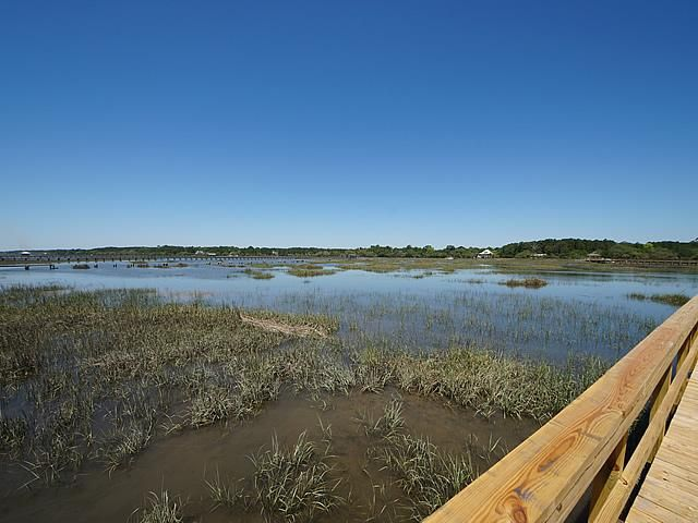 None Lots For Sale - 2952 Bohicket, Johns Island, SC - 17