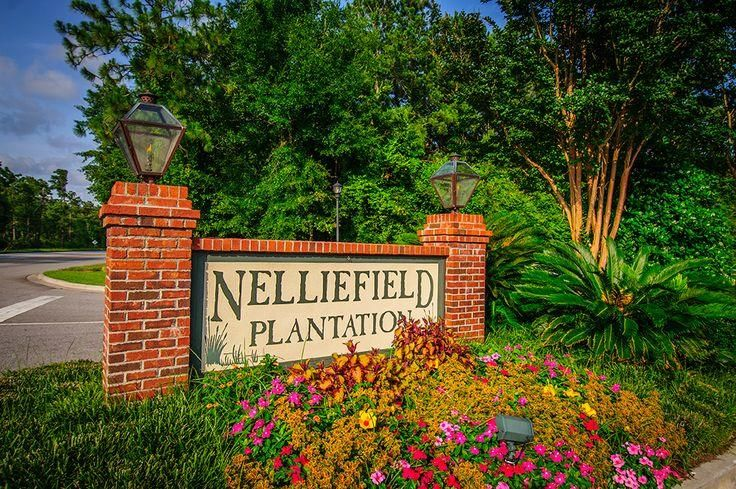 249  Nelliefield Creek Drive Wando, SC 29492