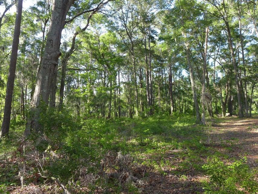 1771  Oak Estates Way Edisto Island, SC 29438
