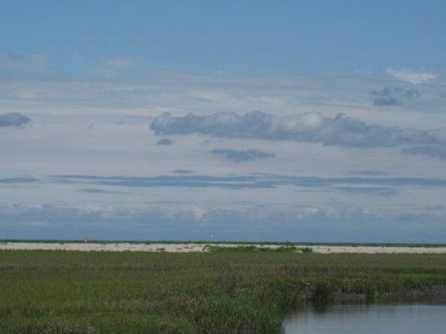 26  Hammocks Way Edisto Island, SC 29438