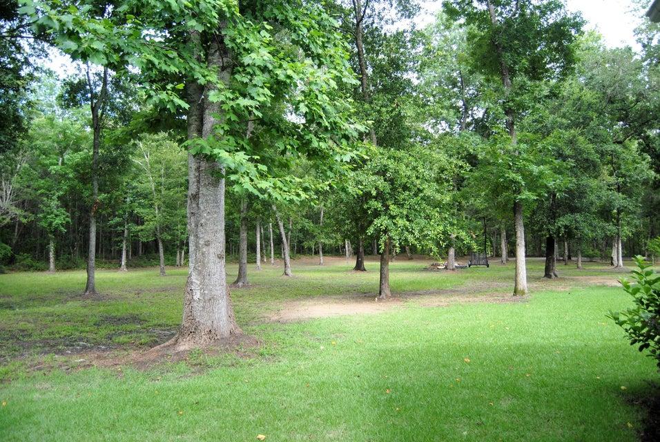 3437 Thunder Gulch Trail Mount Pleasant, SC 29466