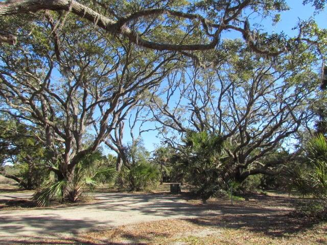 58  Painted Bunting Trail Edisto Island, SC 29438