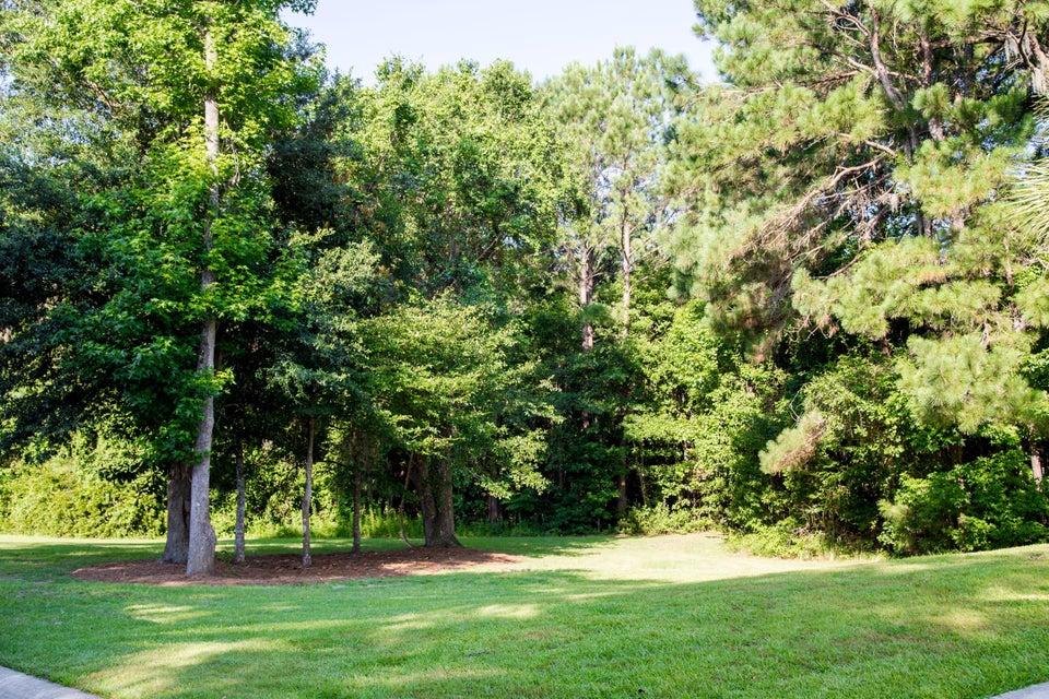 1366  Hamlin Park Circle Mount Pleasant, SC 29466