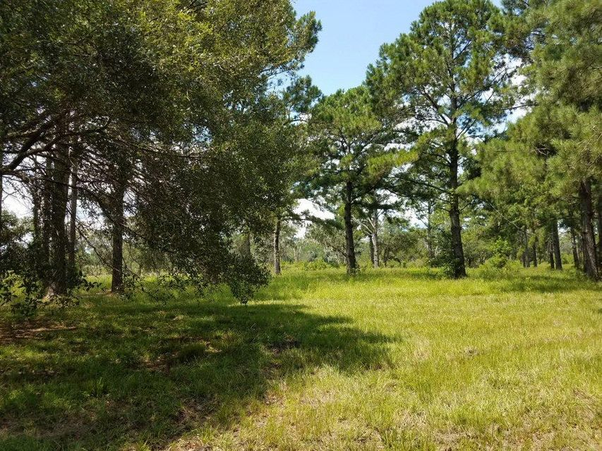 Lot 5  Old School House Road Meggett, SC 29449
