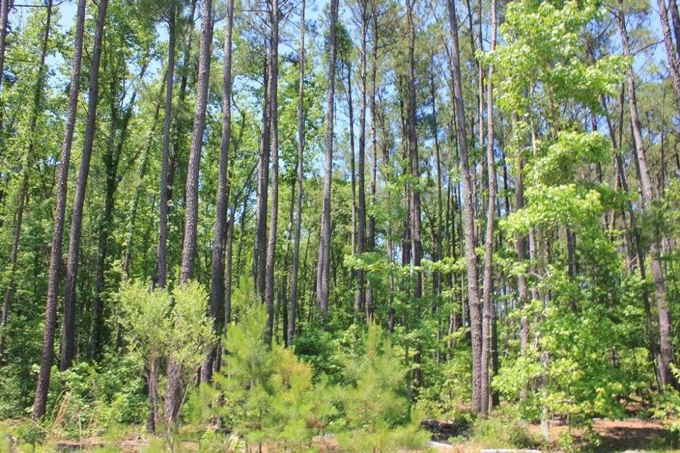 Oak Creek Ct Bonneau, SC 29431
